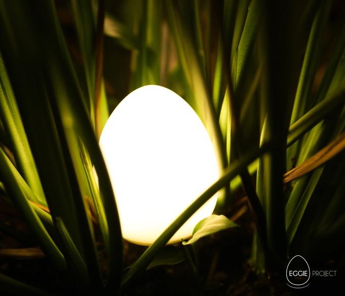 Eggie - Dünyanızı Aydınlatın 3