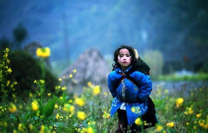 Vietnam'ın Dağlık Alanları