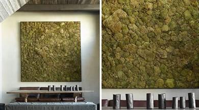 yosun-duvarlar