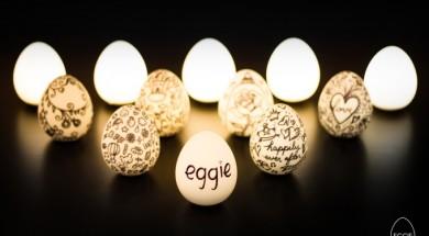 eggie-1